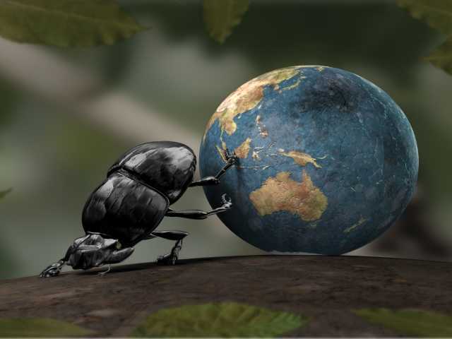 Beetle Rolling Earth 壁紙画像