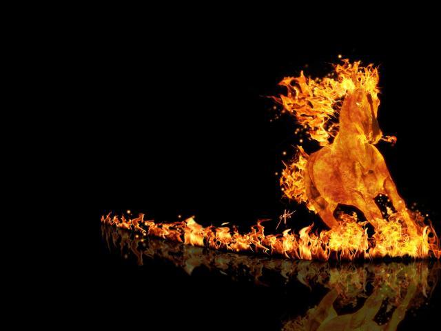 Burning Horse 壁紙画像
