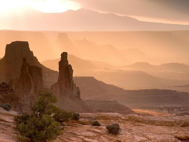 Desert 壁紙画像