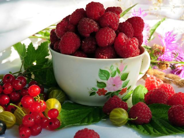 Food Berry 壁紙画像