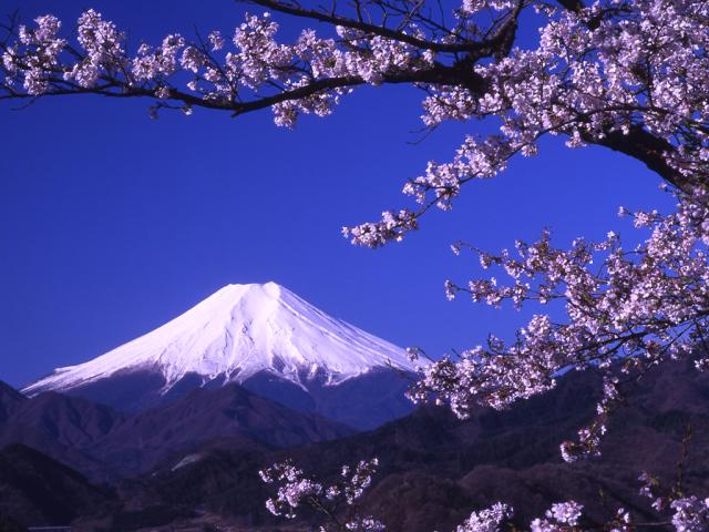 Fuji Earth 壁紙画像