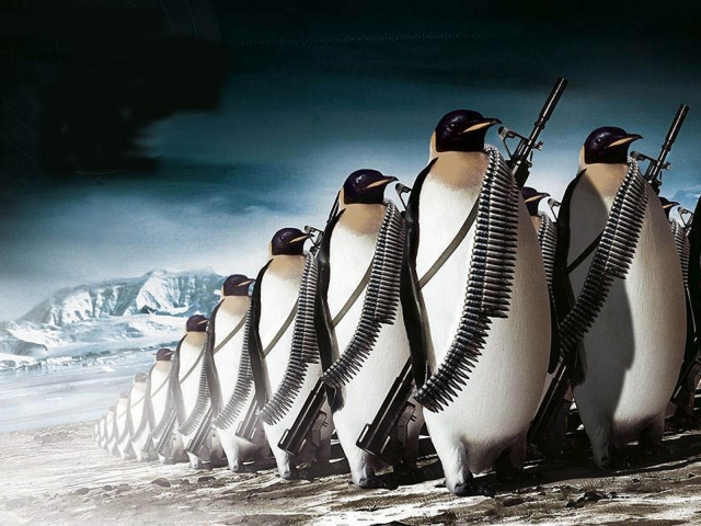 March Of The Penguins 壁紙画像