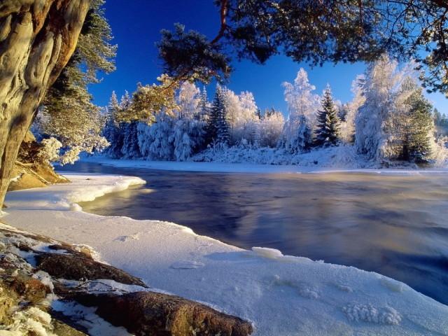 Winter Wonderland 壁紙画像