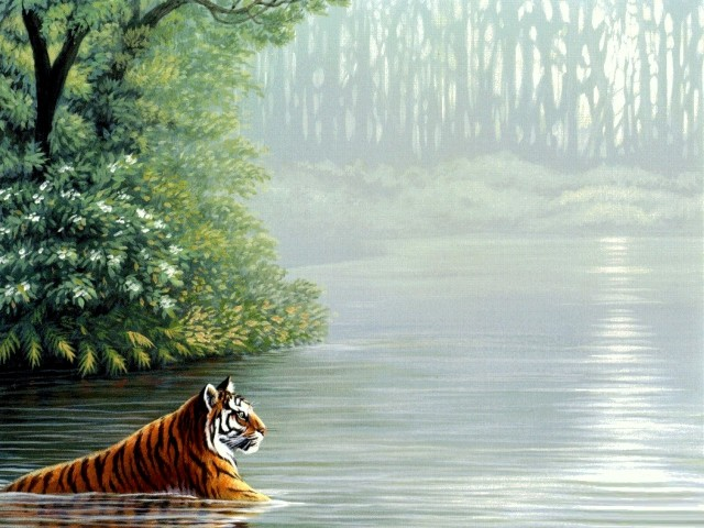 Animal 壁紙画像