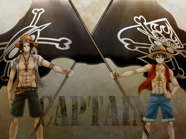 Brothers: Ace And Luffy 壁紙画像