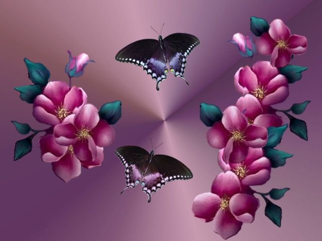 Butterflies & Flowers 壁紙画像