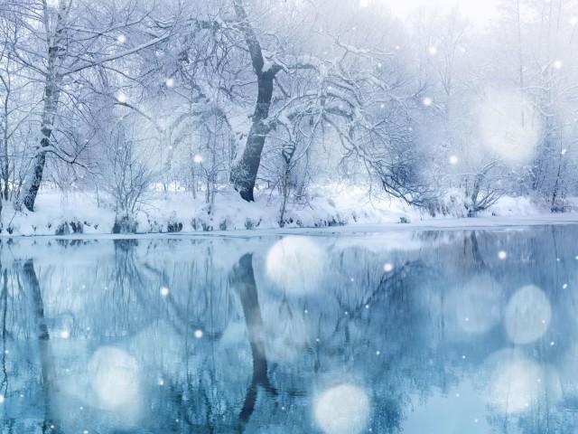 Cold Wonderland 壁紙画像
