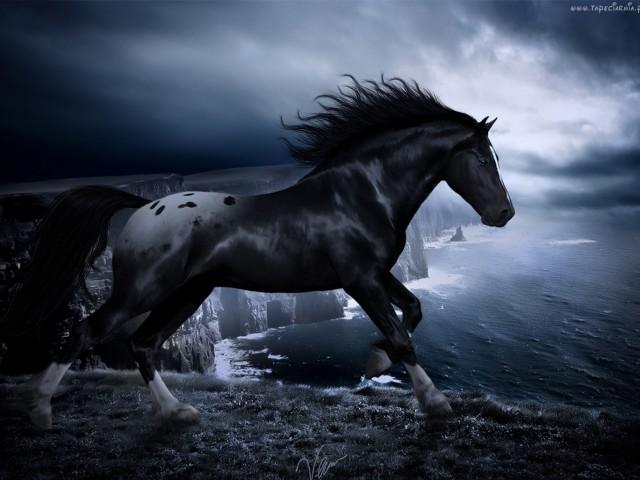 Dark Horse 壁紙画像