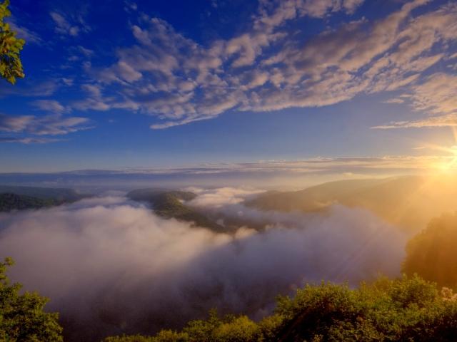 Fog 壁紙画像