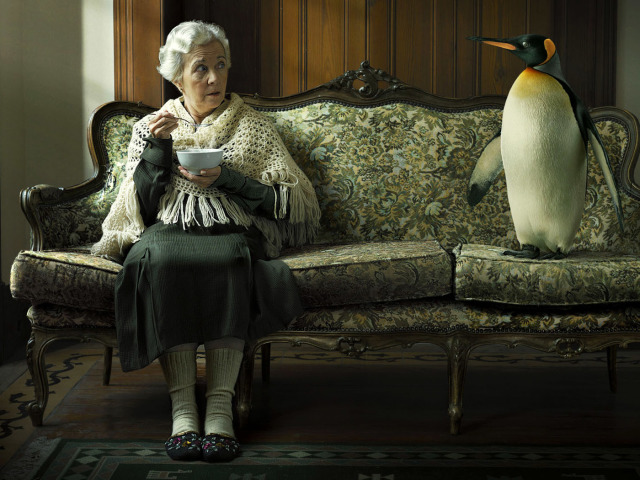 Granny And Penguin 壁紙画像