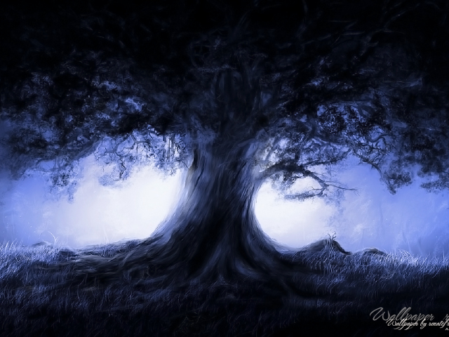 Midnight Tree 壁紙画像
