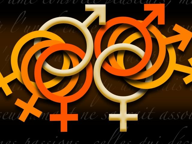 Orgy 壁紙画像