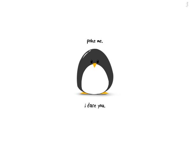 Penguin Poke 壁紙画像
