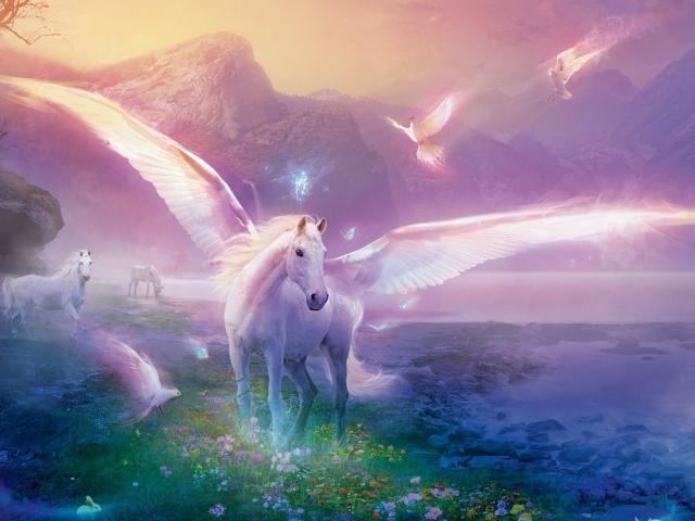 Unicorn 壁紙画像