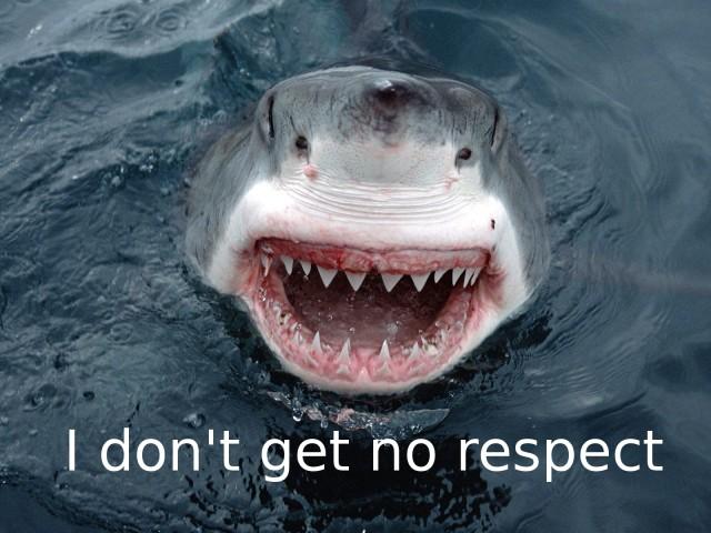 White Shark 壁紙画像