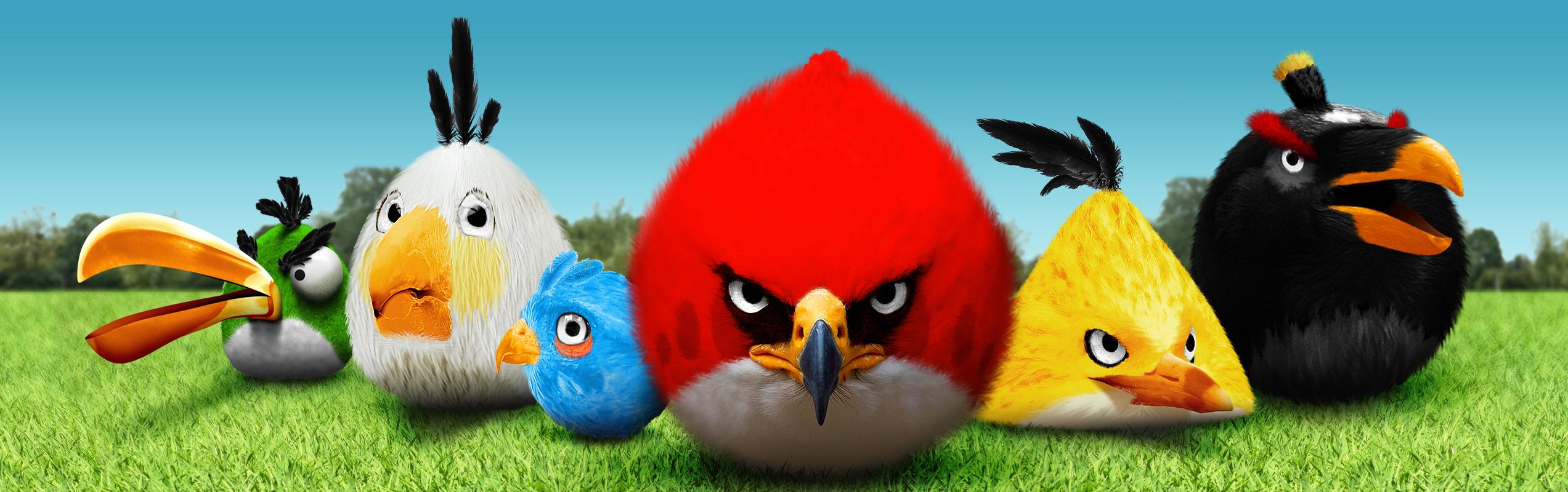 Angry birds pchdwallpaper pchdwallpaper voltagebd Images