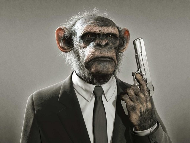 Ape With A Gun 壁紙画像
