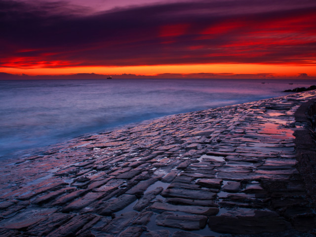 Coastline 壁紙画像