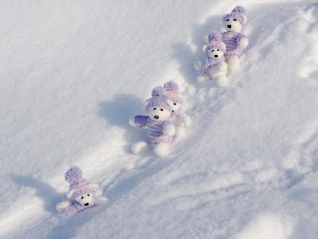 Cute Bears 壁紙画像