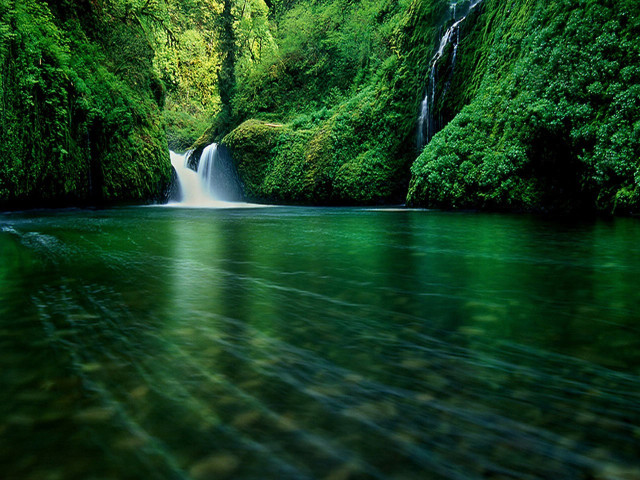 Forest Waterfall 壁紙画像