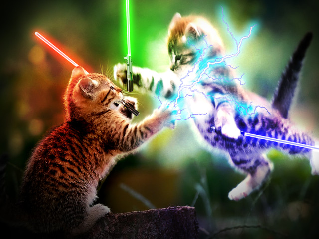 Jedi Cats! 壁紙画像