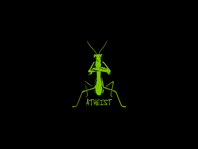 Praying Mantis 壁紙画像