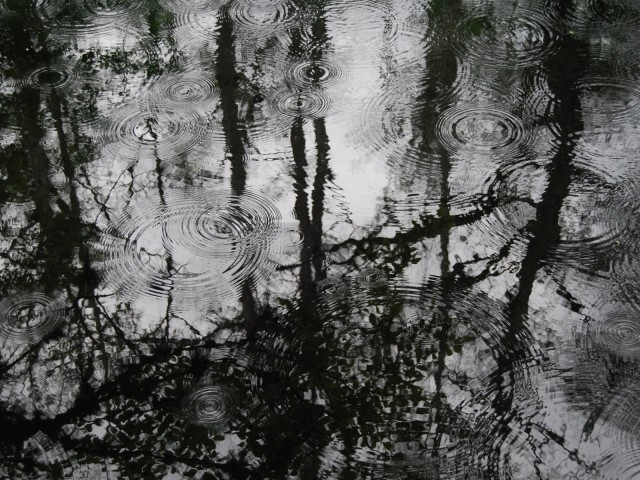 Puddles Of Rain 壁紙画像