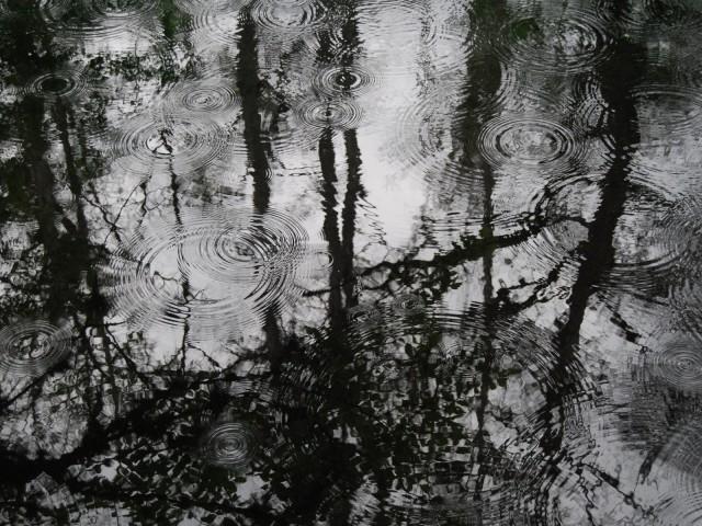 Puddles Of Rain 壁紙画像