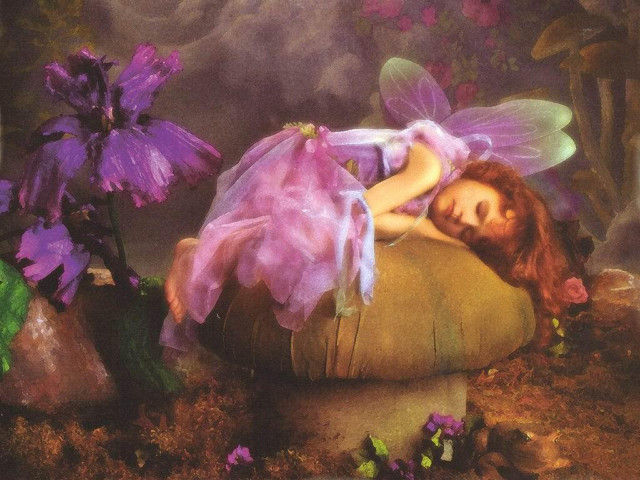Sleeping Little Lady 壁紙画像