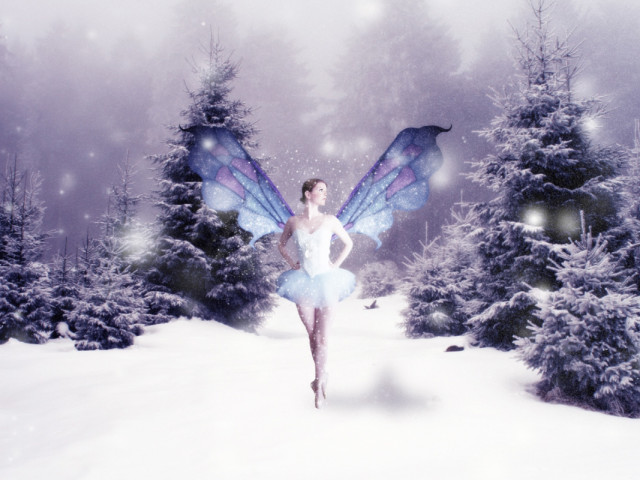 Snow Butterfly Ballerina 壁紙画像