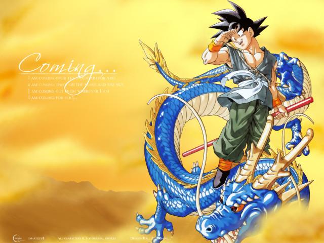 Son Gokou 壁紙画像