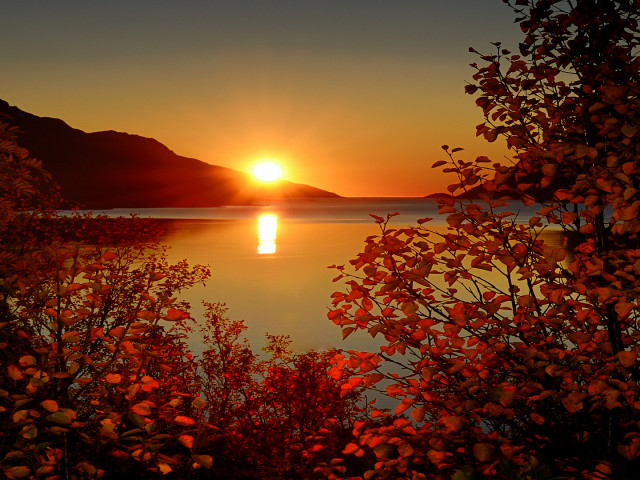 Sunrise 壁紙画像