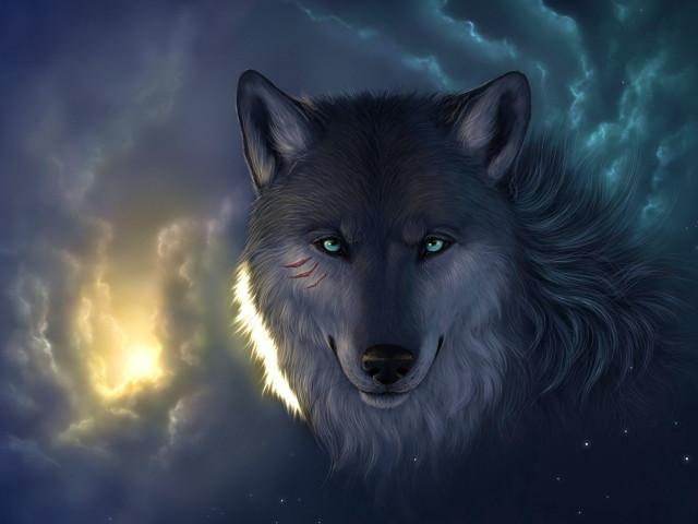 The Wolf 壁紙画像