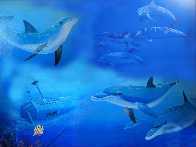 Under The Sea 壁紙画像