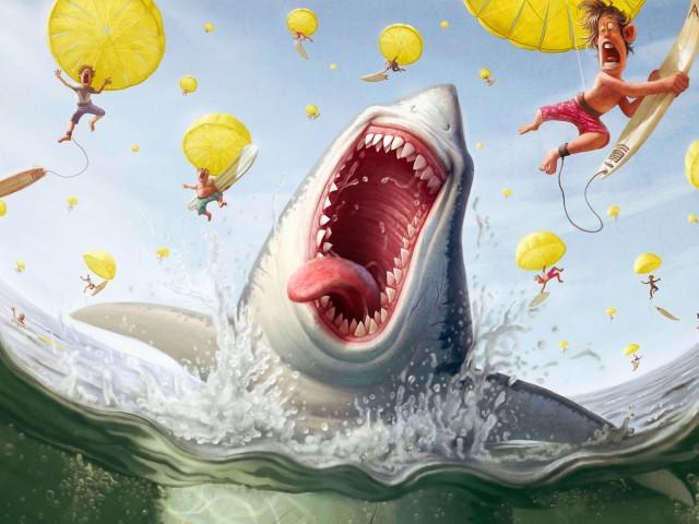 A Shark Feast 壁紙画像