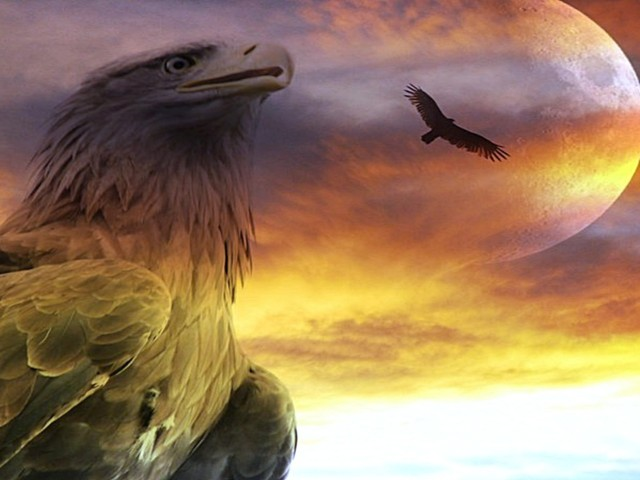 Eagle 壁紙画像
