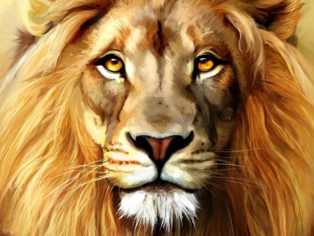 Lion 壁紙画像