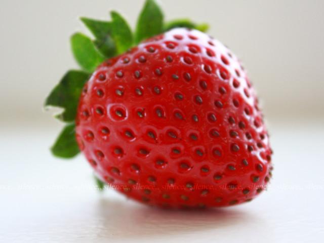 Strawberry 壁紙画像