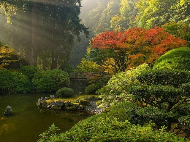 The Japanese Garden 壁紙画像