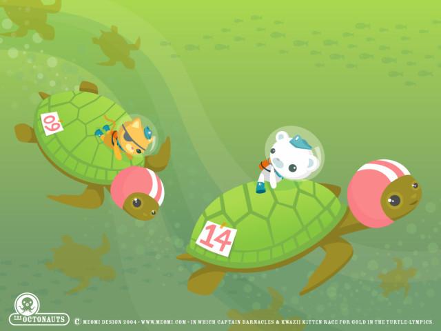 Turtle Race 壁紙画像