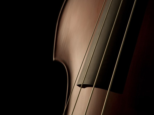 Violin 壁紙画像